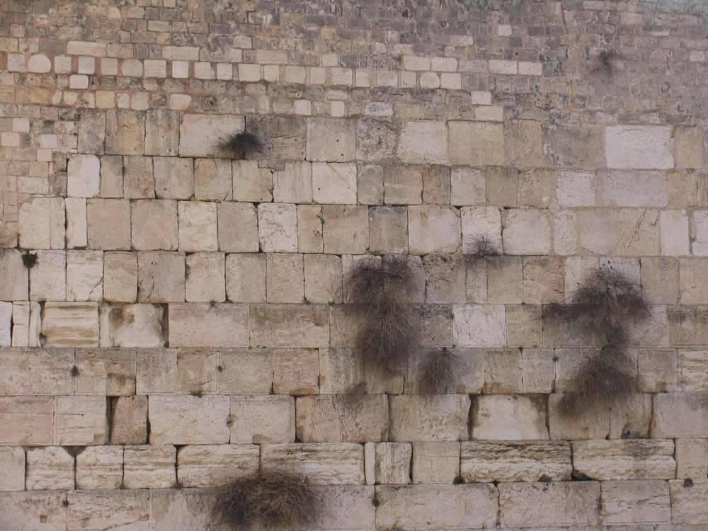 Стена плача (Western wall)