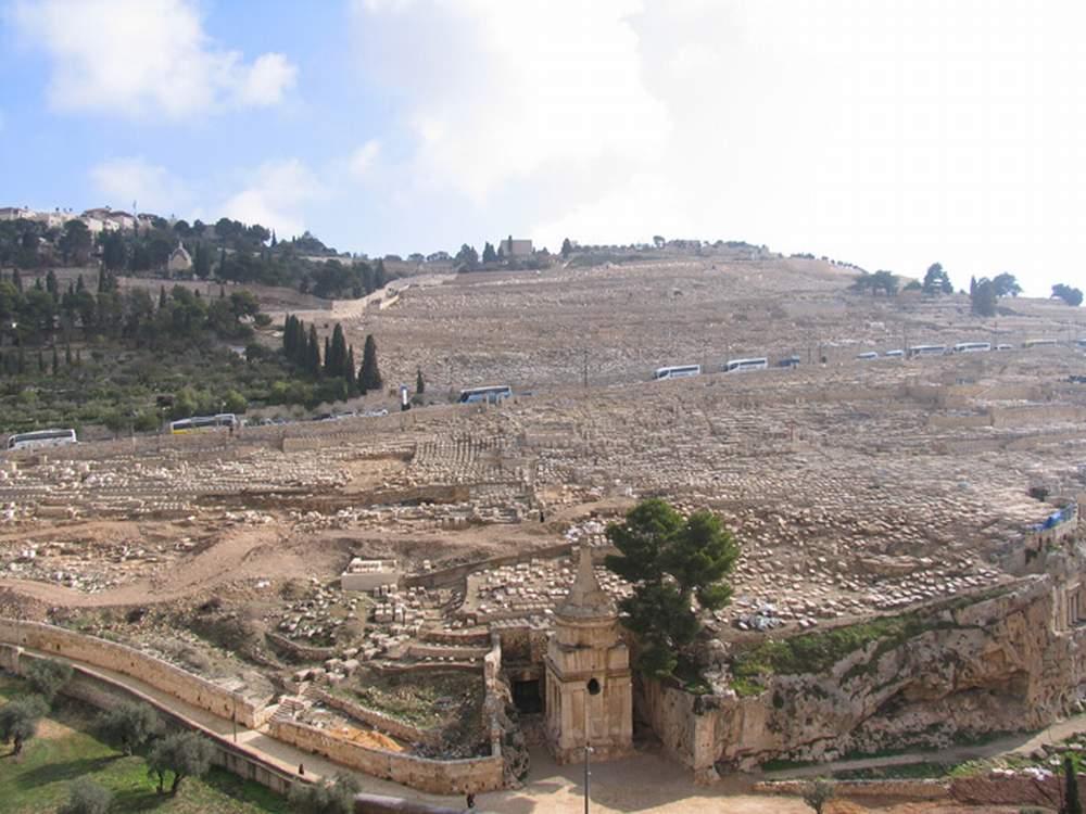 Израиль, Иерусалим, Масличная гора (Israel, Jerusalem, Mount of Olives)