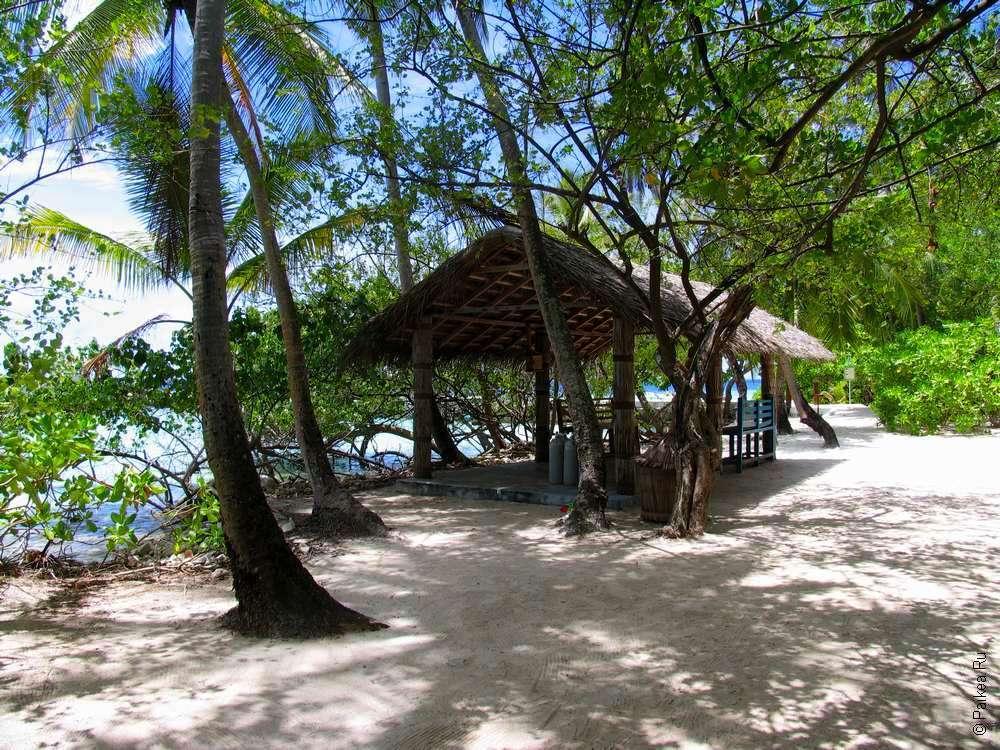 На тропическом острове