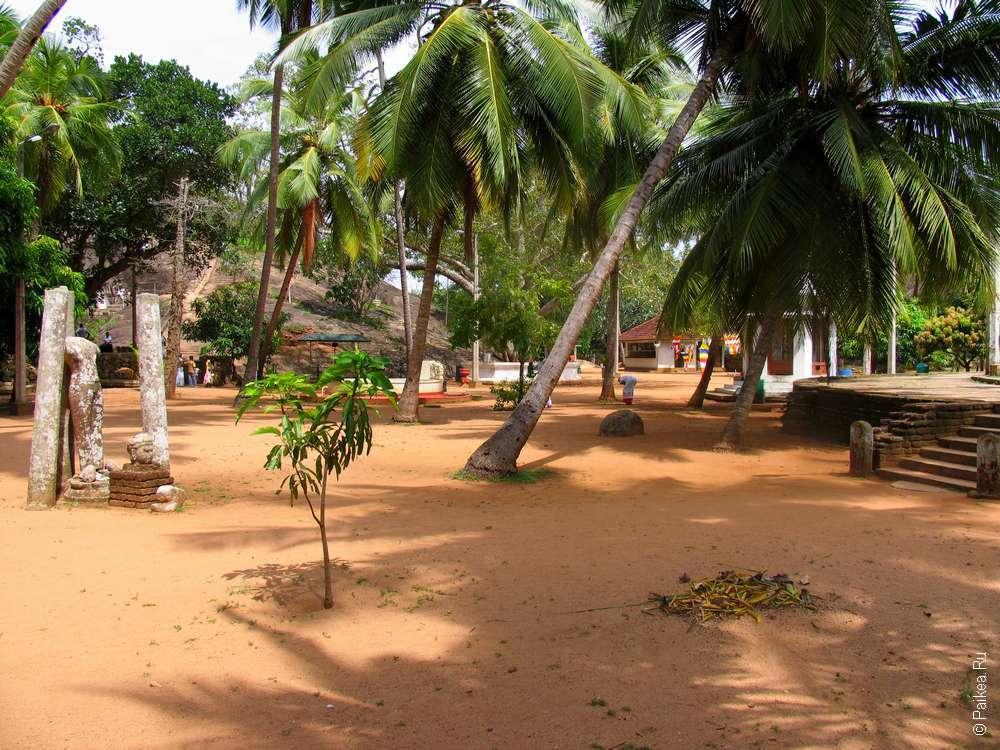 Здесь Махинда задал царю несколько вопросах о манговых деревьях и о других деревьях, и убедился в его уме