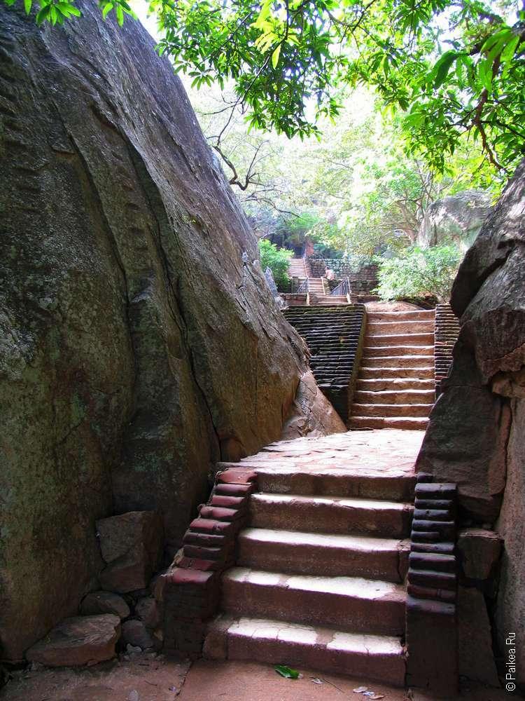 Сигирия лестницы