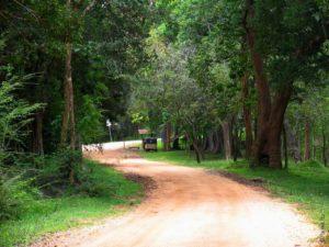 Извилистая дорога в Сигирию