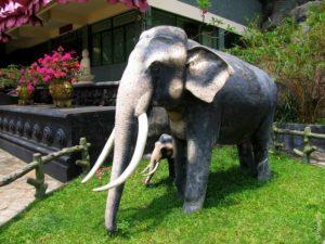 Дамбулла Шри-Ланка