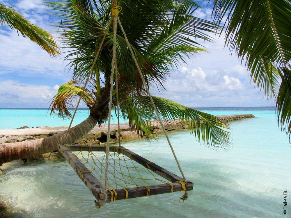 Мальдивы туры отзывы