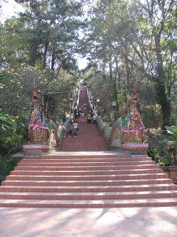 лестница с драконами в дой сутеп