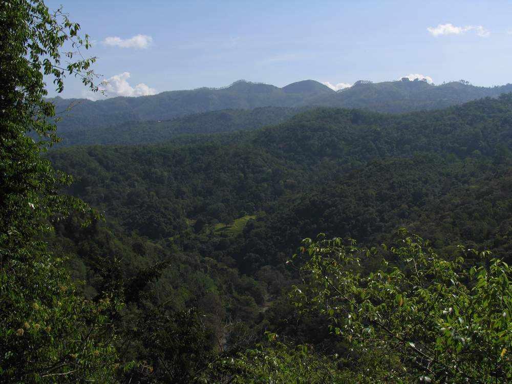 Шри Ланка - Бадулла - Водопад Дунхинда (Sri Lanka - Badulla - Dunhinda Falls)