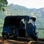 Когда лучше ехать на Шри-Ланку
