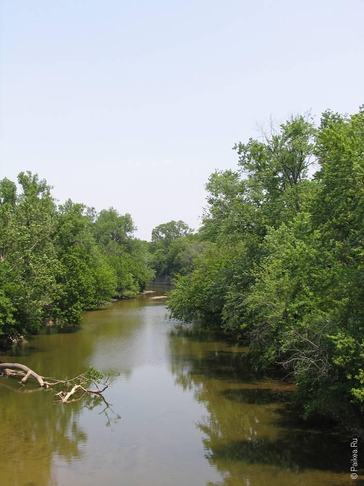 вид на реку с деревьями