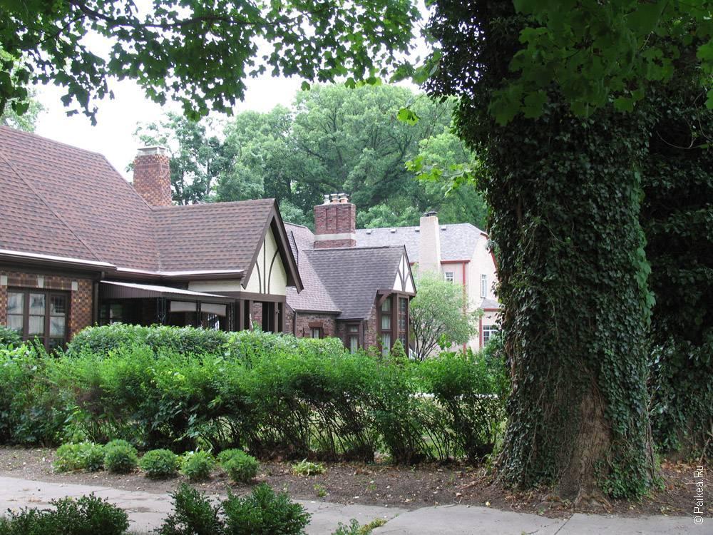 дом окружен кустами и деревьями