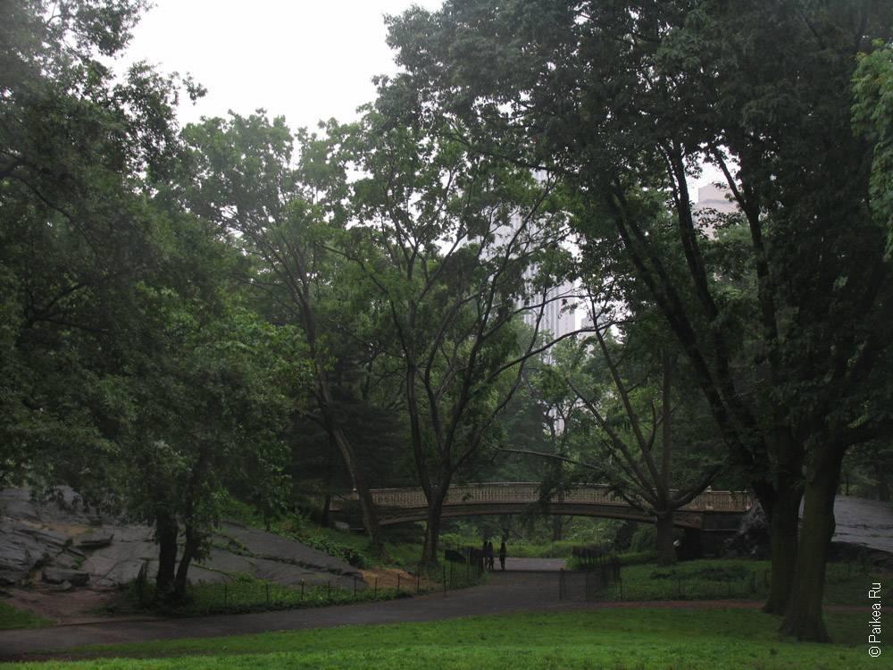 мост в парке