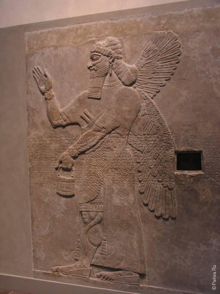 изображение человека с крыльями