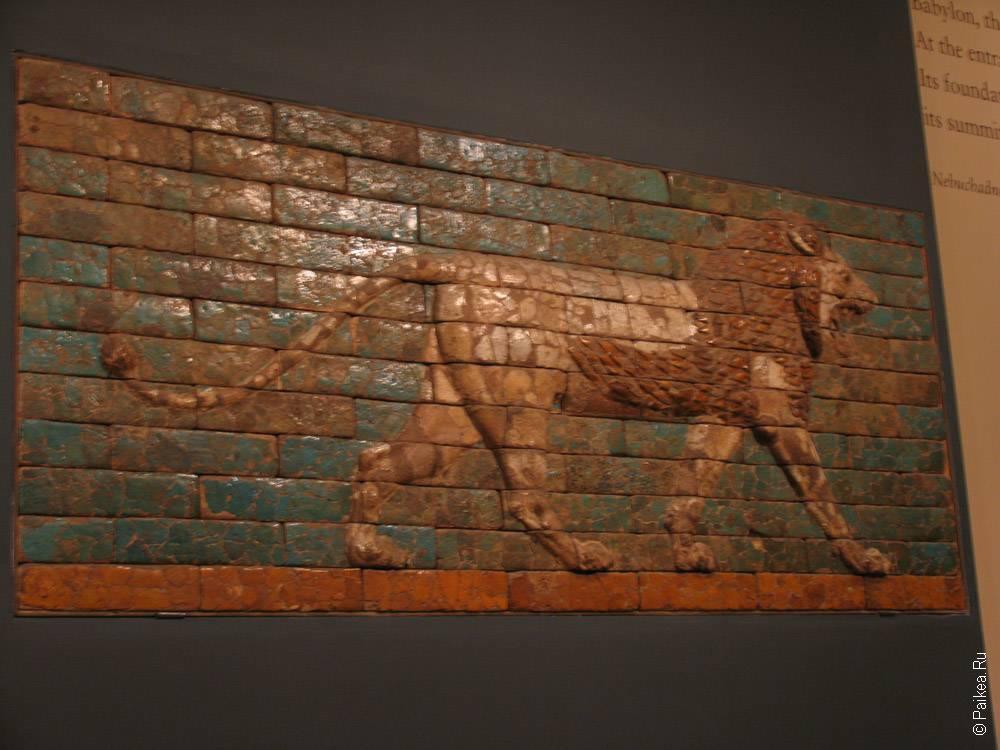 плиточная мозаика - лев