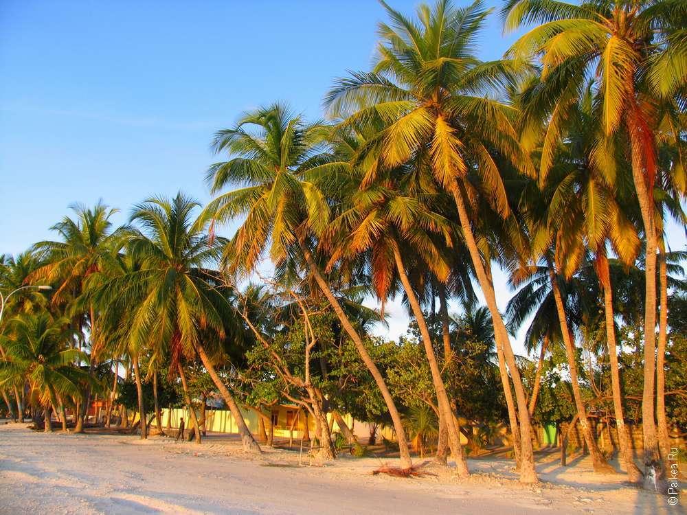 Набережная Маафуши перед закатом на Мальдивах