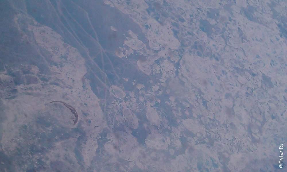ледовое поле в океане