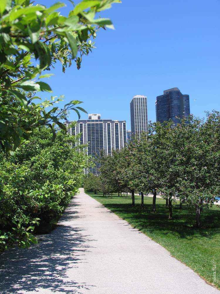Чикаго город
