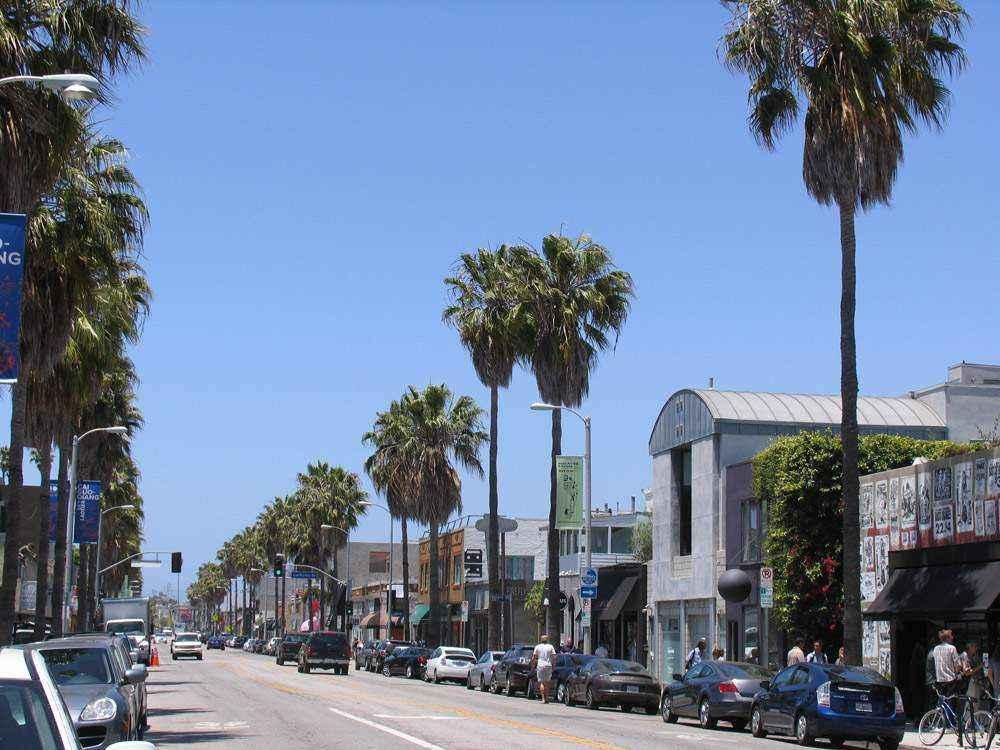 улица с пальмами