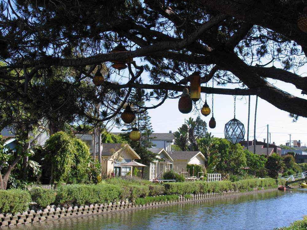 фонарики на дереве над водой