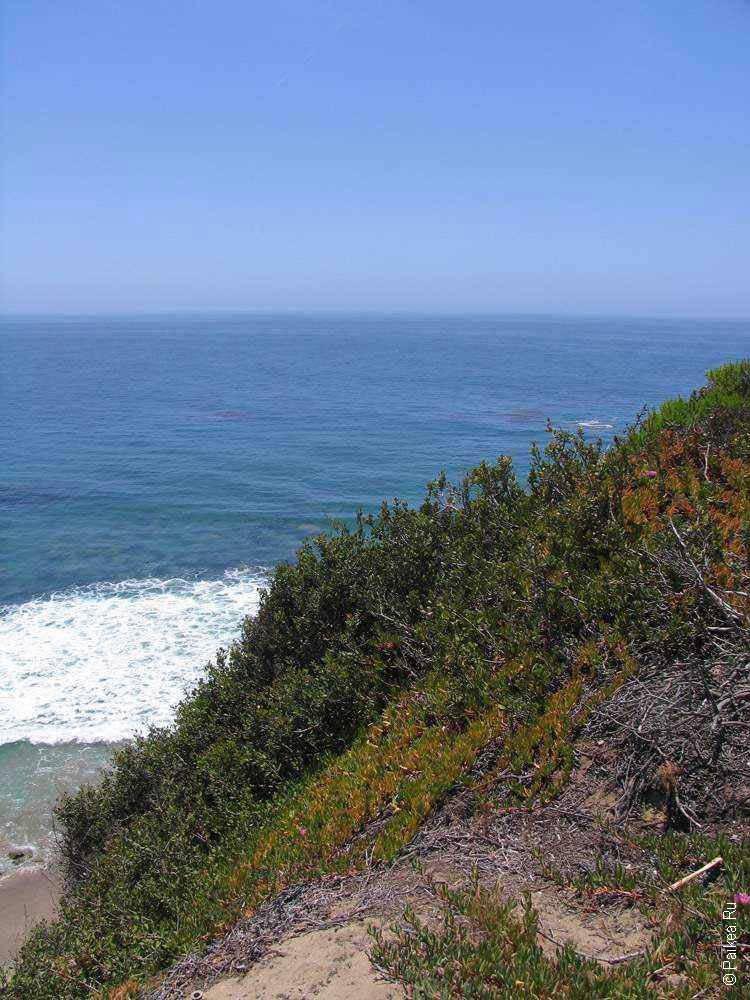 океан в калифорнии