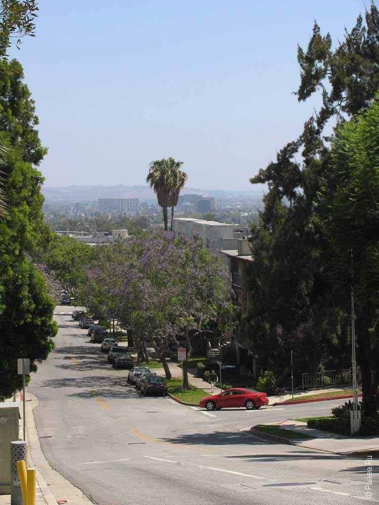 улица в районе голливуд в лос-анджелесе