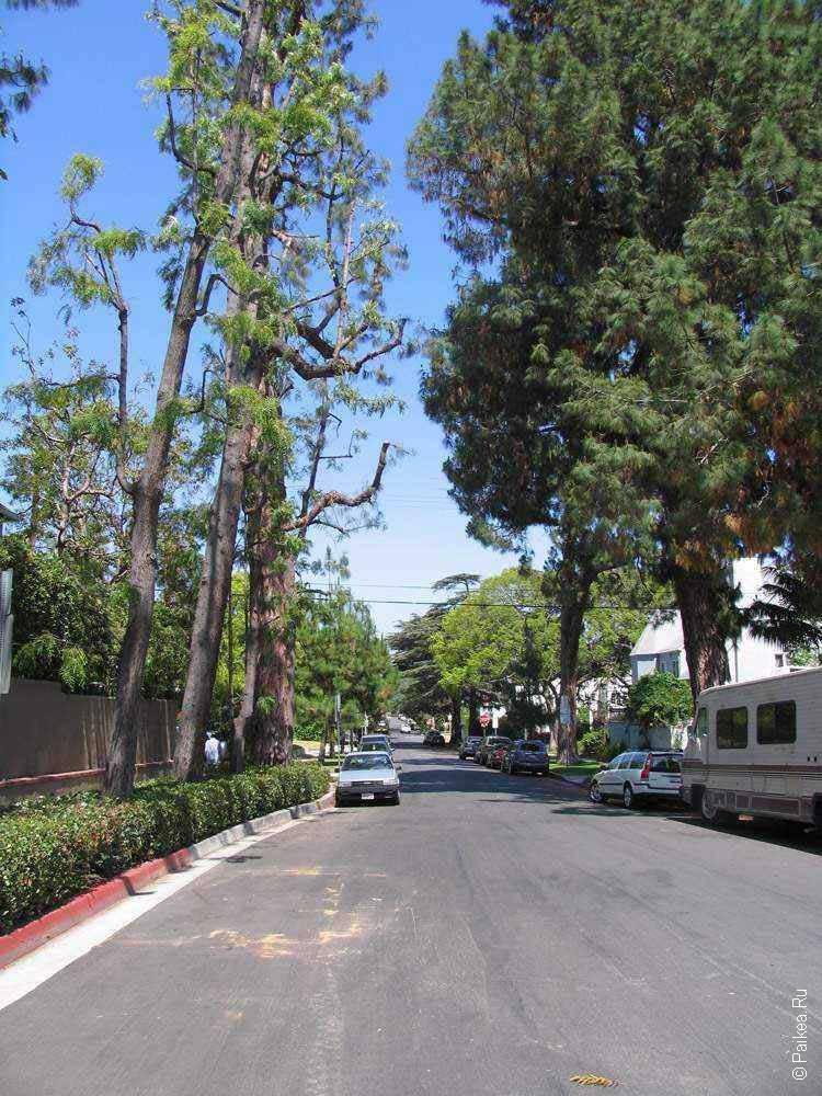 тихая улица в районе голливуд