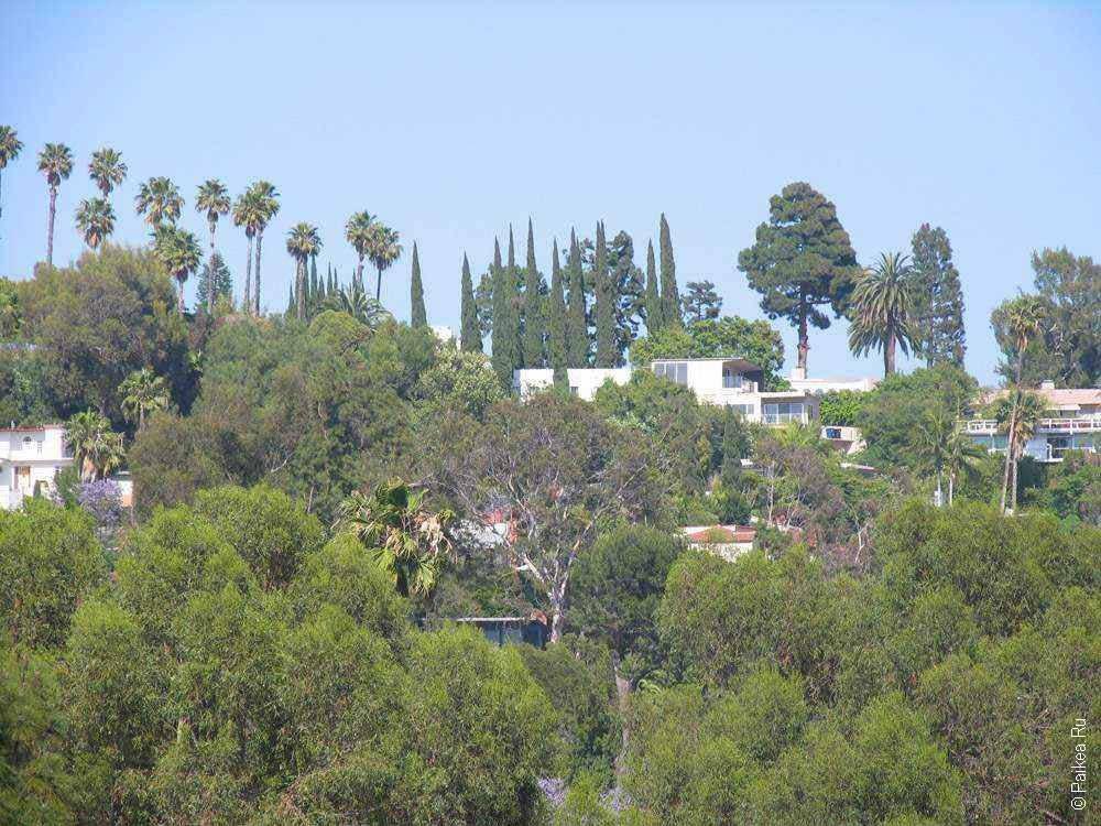 голливудский холм покрыт зеленью
