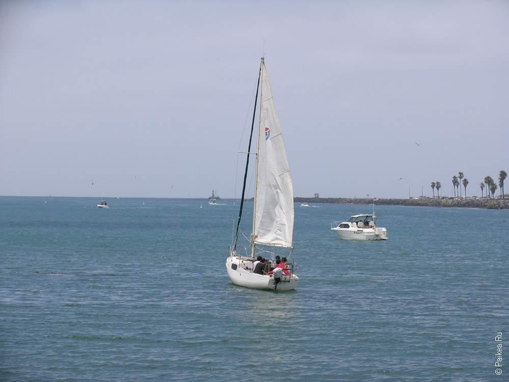 яхта с парусом в калифорнии
