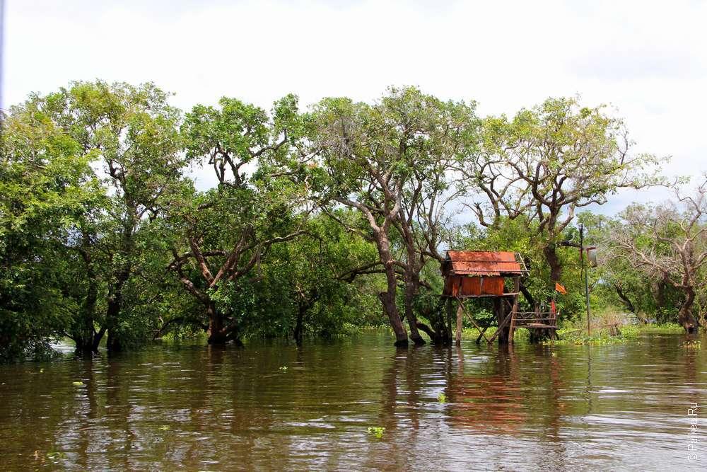 Дом на сваях в плавучей деревне