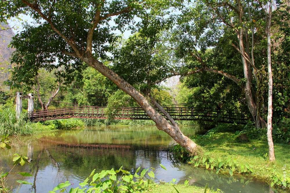 Лесной парк Там Пла Таиланд