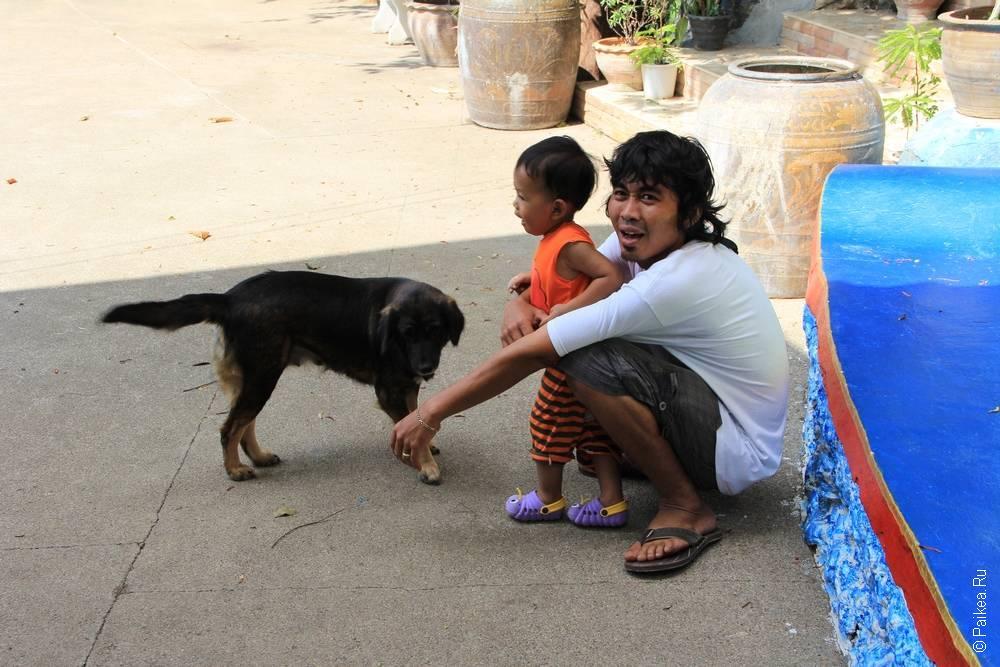 таец с мальчиком и собака