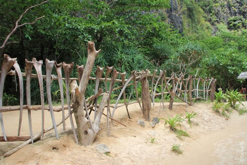 Забор из костей