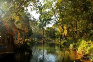 Пещера Чианг Дао Таиланд