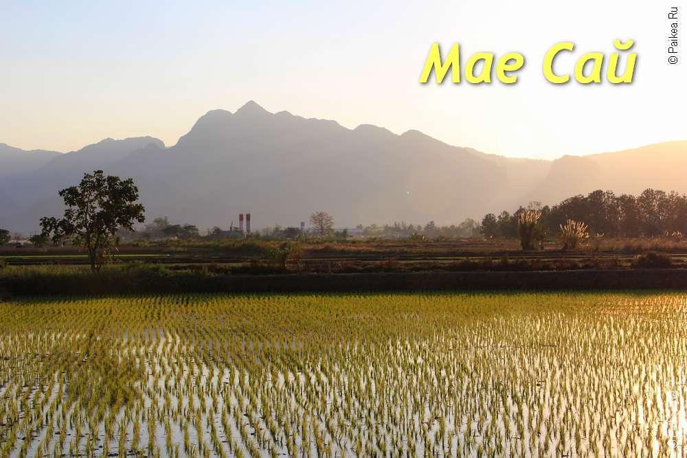 Ме Сай (Мае Сай) в Северном Таиланде