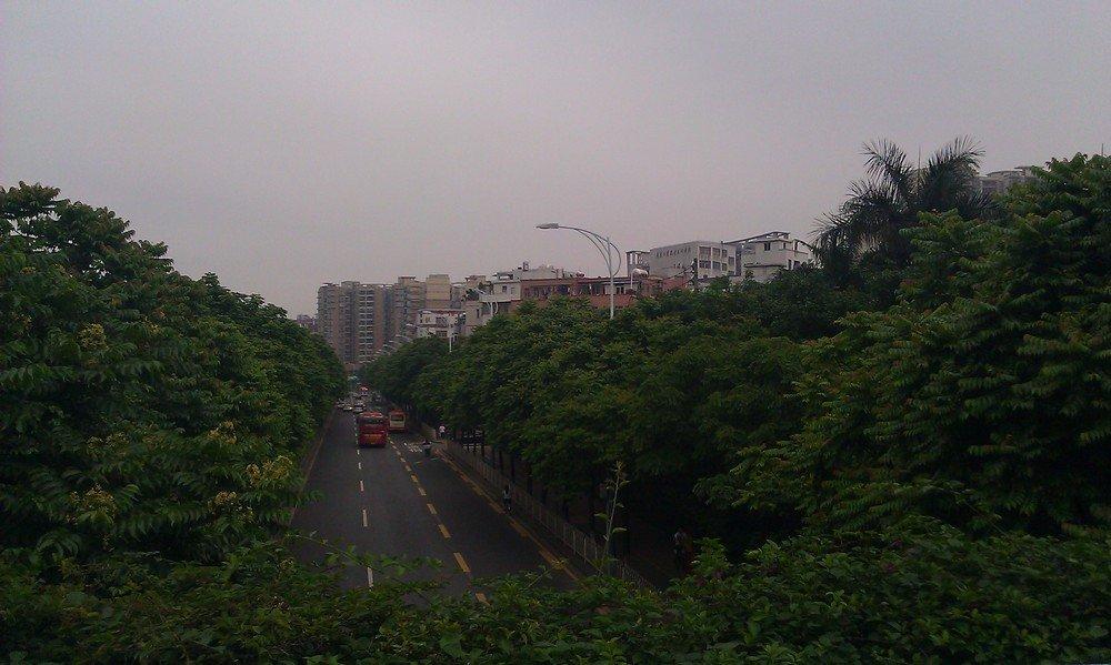 улица в гуанчжоу