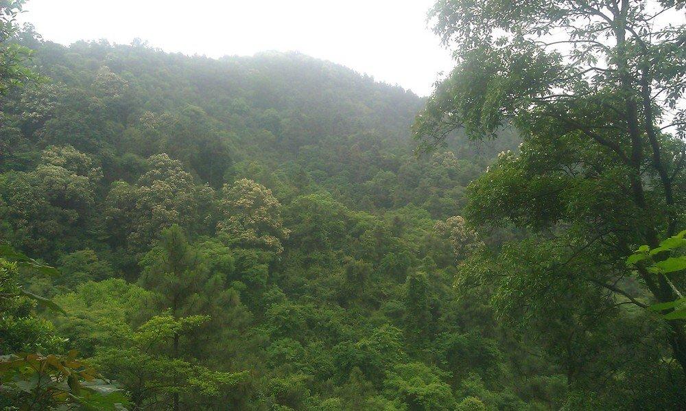 зеленый склон горы Байюнь