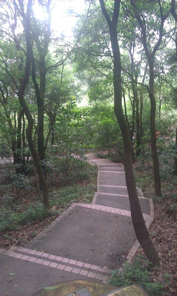 дорожка в парке Байюнь
