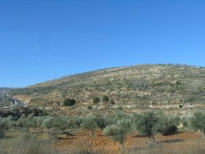 Наблус (Nablus)