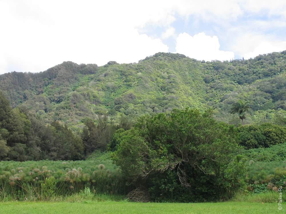 Гавайи Оаху