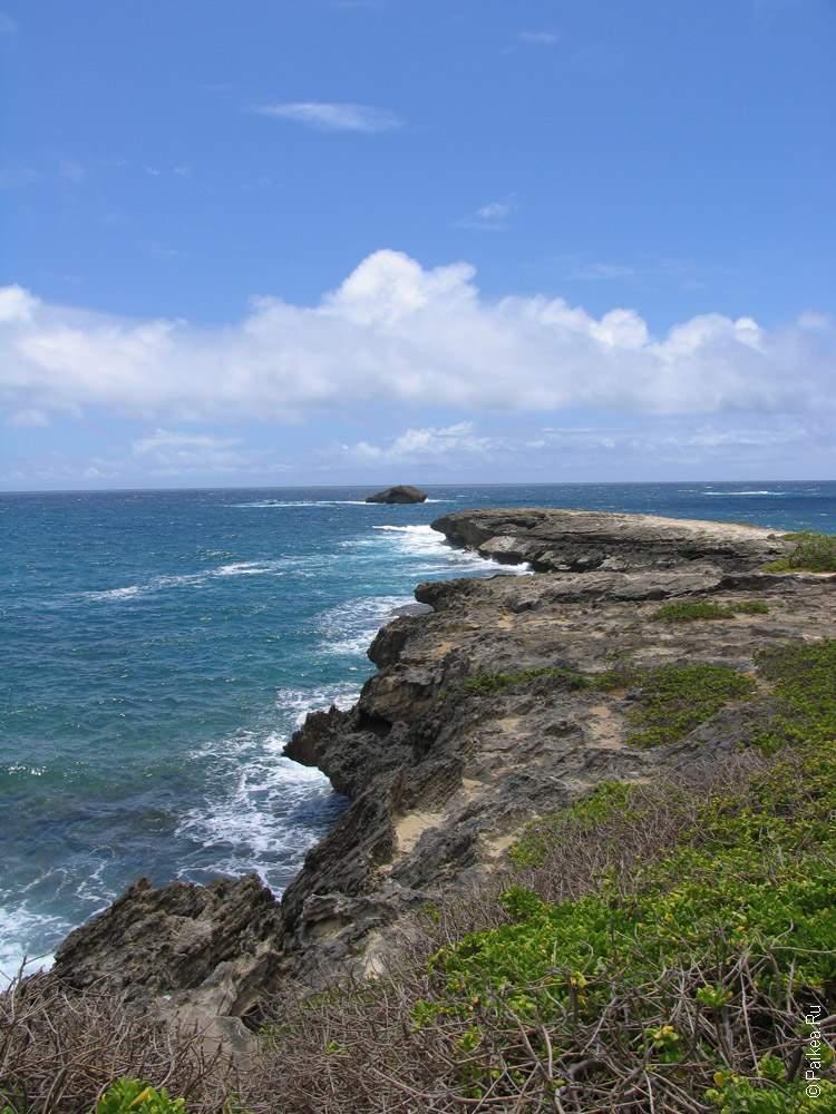 Берег Тихого океана