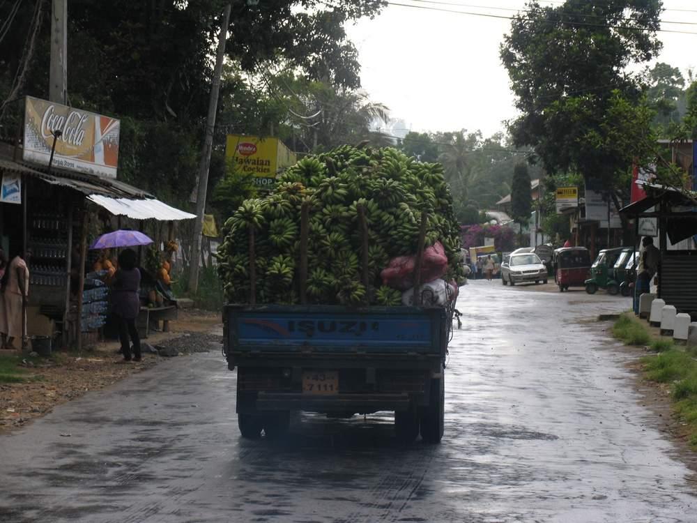Элла Шри Ланка машина