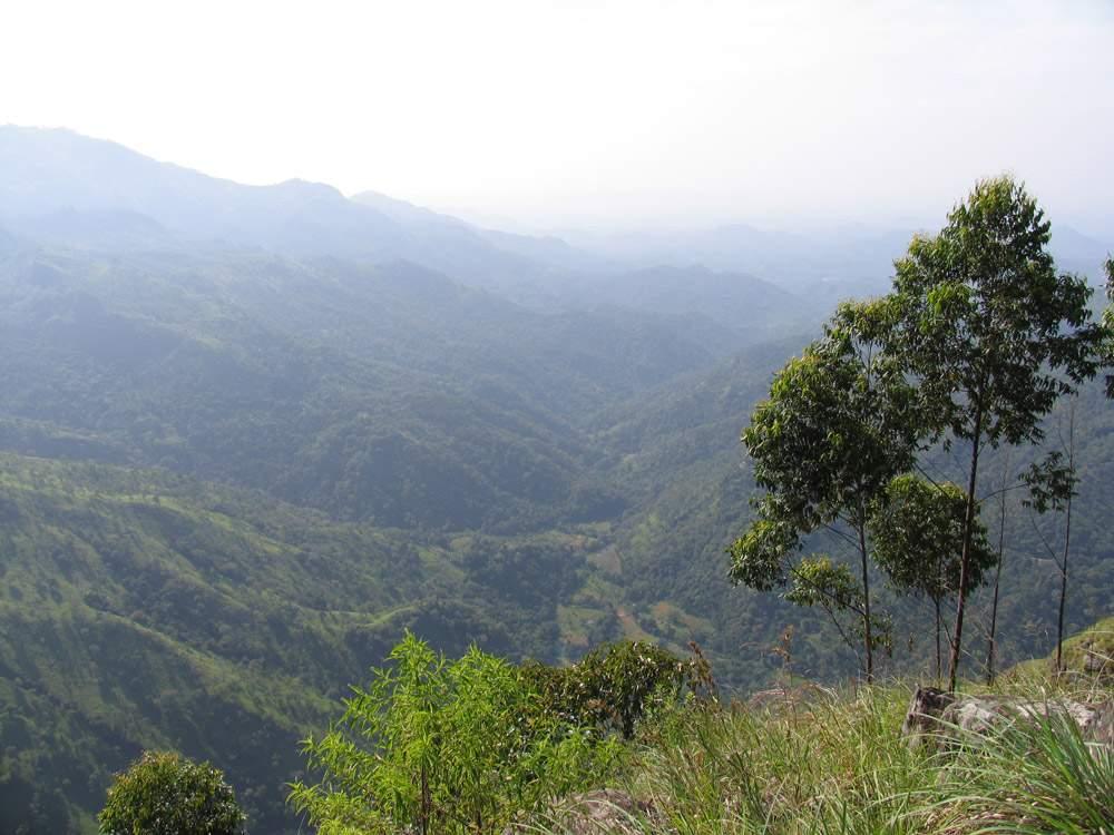 Элла Рок Шри Ланка 10