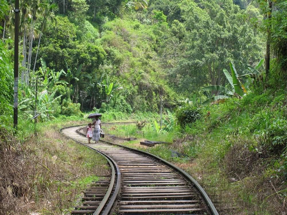 Элла Шри Ланка фото