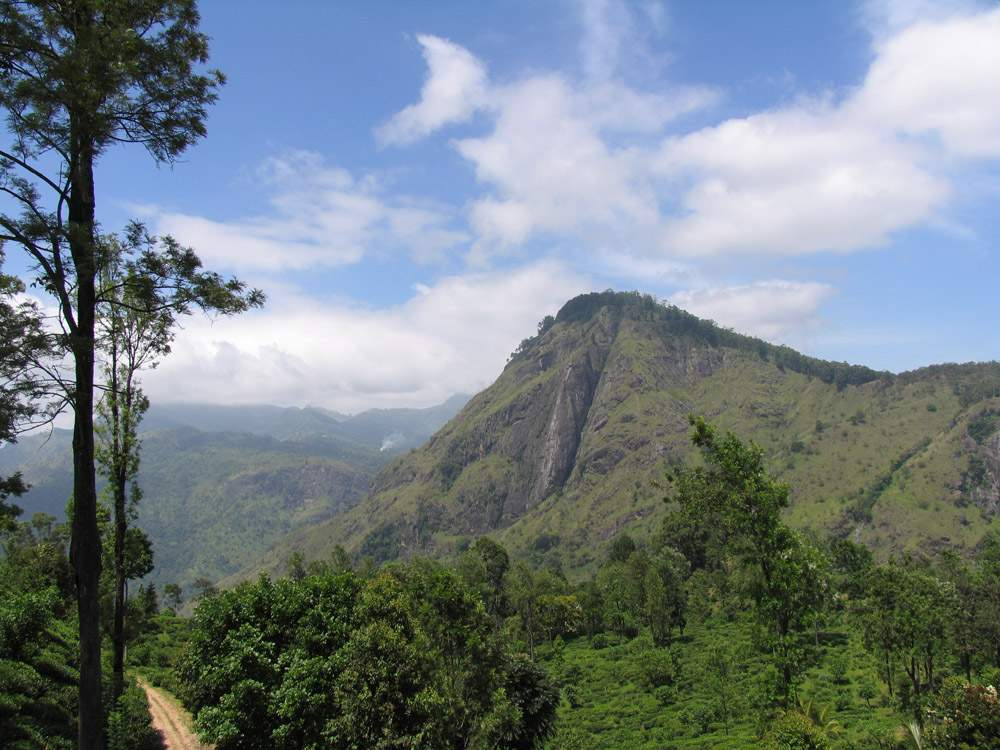 Элла Рок Шри Ланка 20