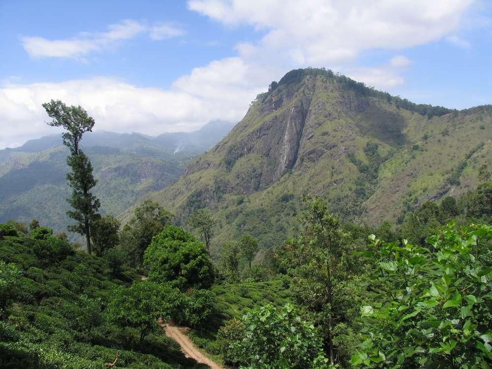 Малый пик Адама, Элла, Шри-Ланка 06