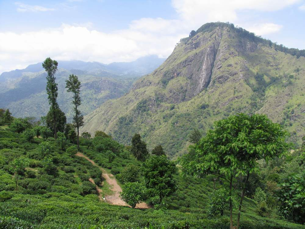 Элла Рок Шри Ланка 25