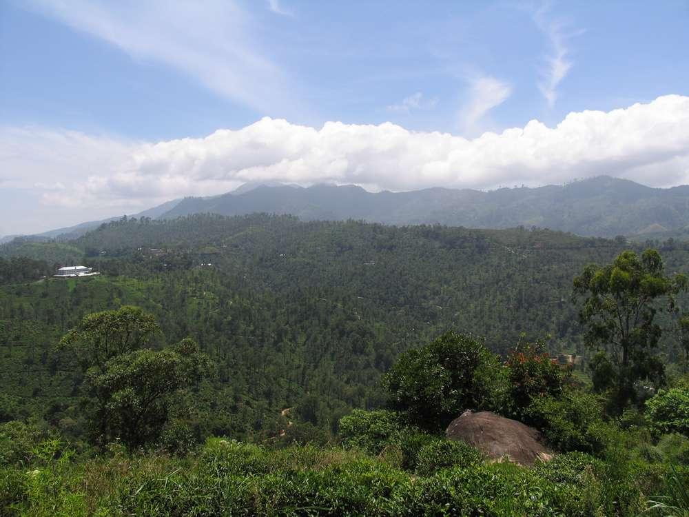Малый пик Адама, Элла, Шри-Ланка 09