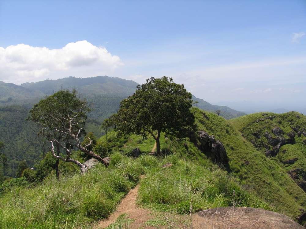 Малый пик Адама, Элла, Шри-Ланка 13