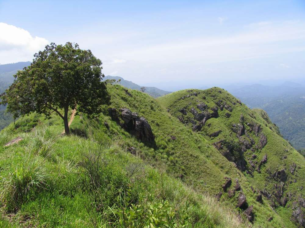 Малый пик Адама, Элла, Шри-Ланка 16