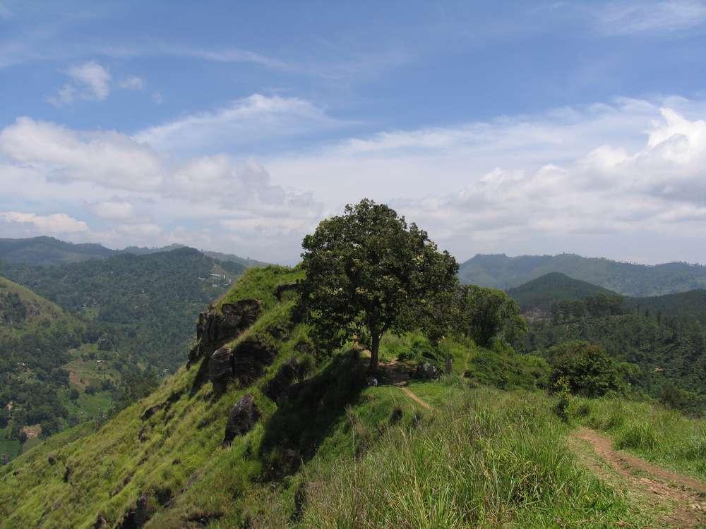 Малый пик Адама, Элла, Шри-Ланка 18