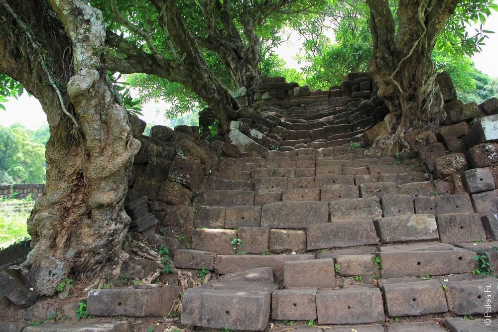 Лестница к Ват Пху