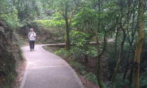 пешеходная дорожка в парке Байюнь